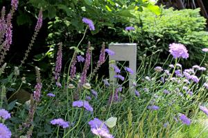realizacia zahrad0012