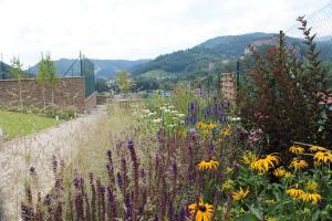 realizacia zahrad0005